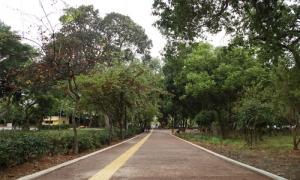 Ανοιχτό για το κοινό το ανακαινισμένο Πάρκο ΓεωργιάδηΑνοιχτό για το κοινό είναι από την περασμένη Δευτέρα 19 Οκτωβρίου το Πάρκο Γεωργιάδη, καθώς οι εργασίες για την περιβαλλοντική αναβάθμισή του ολοκληρώθηκαν.